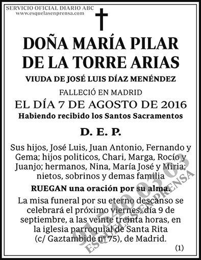 María Pilar de la Torre Arias